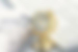 银行与金融理财
