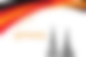 德国直通车项目